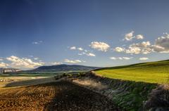 Beautiful HDR picture at the fields of Navarra - stock photo