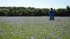 Landscape of blooming cornflower field and woman in skirt walk Stock Footage