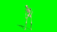 Skeleton goes crippled forward - green screen Stock Footage