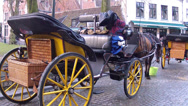Stock Video Footage of Stagecoach in waiting for tourists.