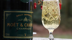 Moët & Chandon Champagne Stock Footage
