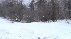 Snow covered ground in the park Stock Footage