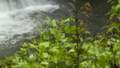 Base of Looking Glass Falls in Blue Ridge Mounains, NC Stock Footage