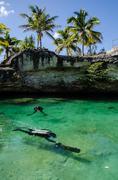 Cenotes from the yucatan - stock photo