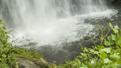Looking Glass Falls, NC Water Impact with Green Leaves Stock Footage