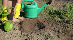 Girl digs hole poured water from watering can plant  seedling Stock Footage