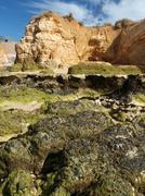 Algarve coast at low tide the ocean . Stock Photos