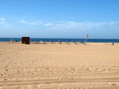 A section of the idyllic praia de rocha beach on the southern coast of the po Stock Photos