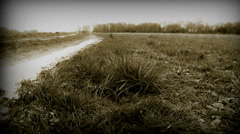 A woman walks on pathway in countryside (B & W dolly) Stock Footage