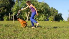 Young girl with dog playing in the park with toy, jumping Stock Footage