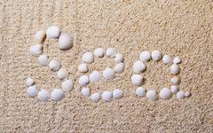 """Title """"sea"""" from shells with coral sand Stock Photos"""