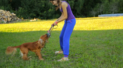 Girl pulling a rope with her dog in the garden in summer, playing Stock Footage