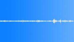 Birds chirping (5 min) - sound effect