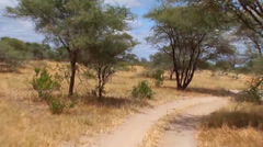 Traveling a dirt road in the Serengeti Stock Footage