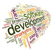 Software development concept in tag cloud Stock Illustration
