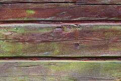 horizontal timber wall with green mold - stock photo