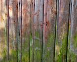 Stock Photo of vertical red plank wall with mold