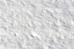 smooth field of snow oblique lit bij the sun - stock photo