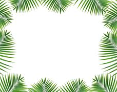 Leaves frame on isolated white background Stock Photos