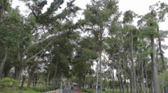 A view from an entrance at Taipei's largest park - Daan with ubike cameo Stock Footage