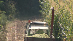 Threshing machine working in a field of maize for silage Stock Footage
