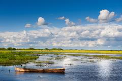 Wooden boat in Biebrza wetland area landscape Stock Photos