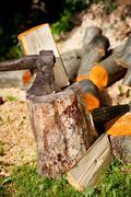 Heavy axe split alder orange log - stock photo