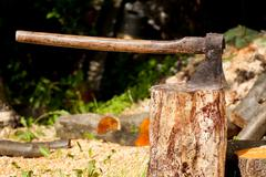 Large iron axe impaled in wood log - stock photo