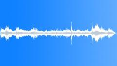 Hockey Ambience - Indoor - sound effect