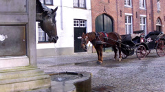 Stagecoach in waiting for tourists. Stock Footage
