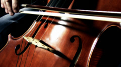 4K Cello 38 stylized Stock Footage