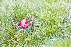 Red eggs in a basket lies in the grass, Stock Photos