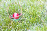 Stock Photo of red eggs in a basket lies in the grass,