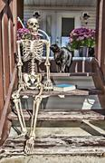 backstep skeleton & black cat - stock photo
