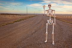 Country roads skeleton Stock Photos