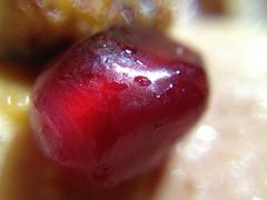 Pomegranate Fruit Seed - Macro Close up - stock photo