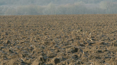 4K Countryside Continental Snowless Winter 4 plough field Stock Footage