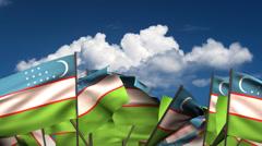 Waving Uzbek Flags Stock Footage