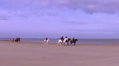Winter horse ride on the beach. - stock footage