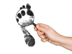 Magnifying glass in hand and foot printout - stock photo