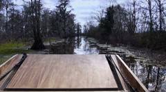 Swampland Airboat Passenger POV 4037 - stock footage