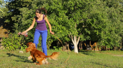 Crazy dog playing with girl in the garden, burning calories - stock footage