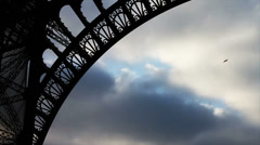 Bird Flying by Eiffel Tower in Paris France, Slow Motion - stock footage