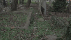Old haunted cemetery [flycam] _8 Stock Footage