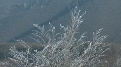 4K Winter Forest Hills Landscape 2 Stock Footage