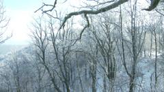 4K Winter Forest Hills Landscape 4 Stock Footage