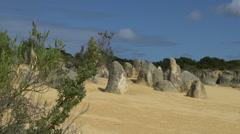 The Pinnacles in Western Australia Stock Footage