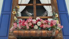 Fake Plastic Flowers in Window Stock Footage