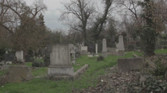Old haunted cemetery [flycam] _1 Stock Footage