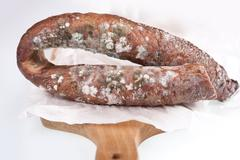 Ring of toxic mold on smoked sausage - stock photo